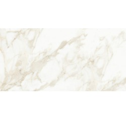 MASSA CALACATTA 18X36 POLISHED