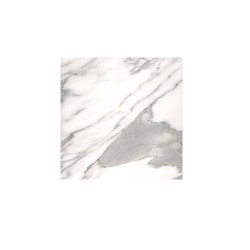 STATUARIO VENATO WHITE  12""